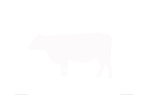 12 Stones Grassland Beef